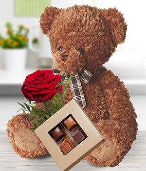 Teddy with Chocs & Rose