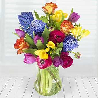 Spring Day Spring Flowers Iflorist