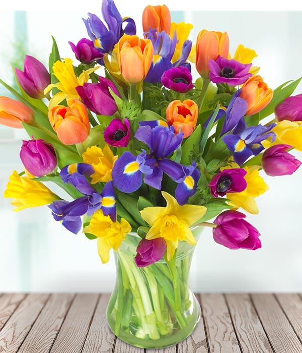 Firework | Spring Flowers | Flowers Delivered