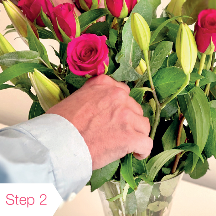 Rose Care Guide Step Two