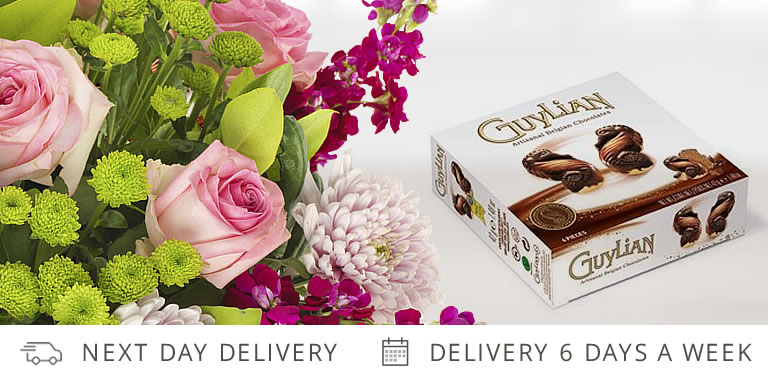 Exclusive - Free Chocolates