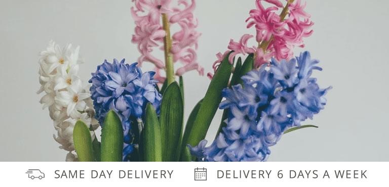 Hyacinth Bouquets