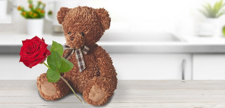 Teddy with a Rose